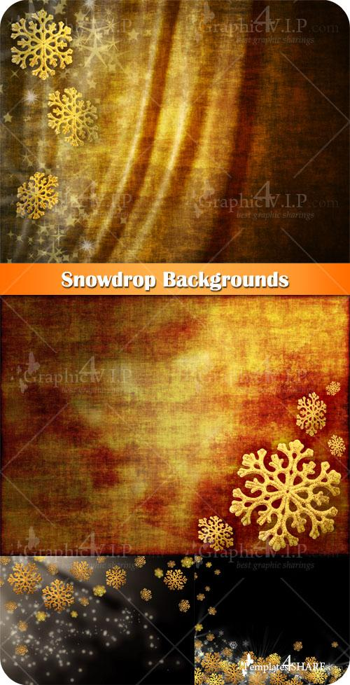 Snowdrop Backgrounds - Stock Photos