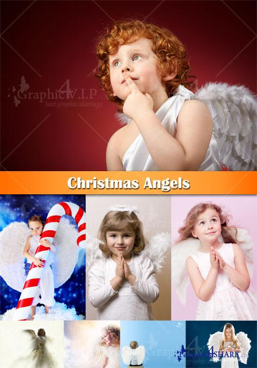 Christmas Angels - Stock Photos