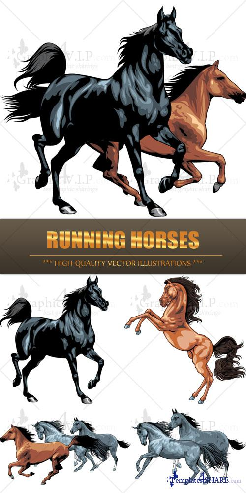 Running Horses - Stock Vectors