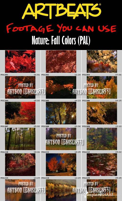 Artbeats Nature: Fall Colors (PAL)